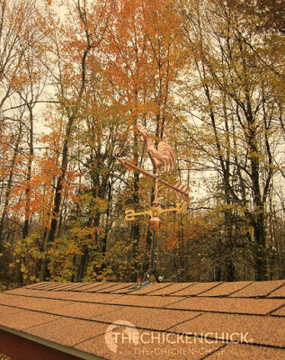 My copper weathervane was a gift from my husband for our seventh wedding anniversary. Did you know seven is the copper anniversary? True story.