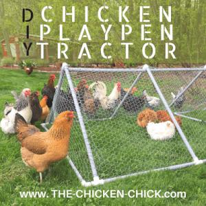 DIY Chicken Playpen Tractor