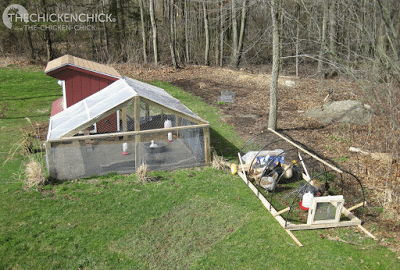 As a change of scenery for non-free range chickens: