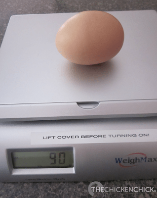 Eggs of unusually large size ordinarily contain double yolks and the hen's reproductive system accommodates for the anomaly by working overtime to generate these monstrosities.