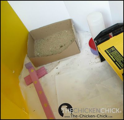 Brooder set up for baby chicks.