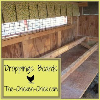 "Droppings boards are essentially a shelf designed to collect chicken poop deposited overnight. Most chicken-keepers scrape off the droppings boards (DBs) each morning. I use a 12"" taping knife and a big bucket, which makes quick work of the task. Then it goes directly to the compost pile."