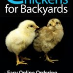 Chickens for Backyards