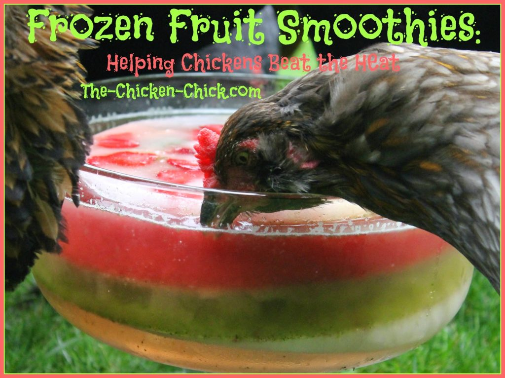 Frozen Fruit Smoothies & Pullet Punch