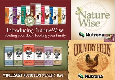 Nutrena Poultry Feed Giveaway at www.The-Chicken-Chick.com