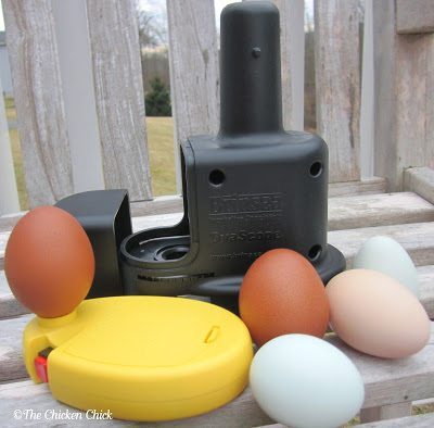 Egg Candling | Brinsea Ovascope (black) and high-intensity candler (yellow) The Ovascope sits on top of the candler.