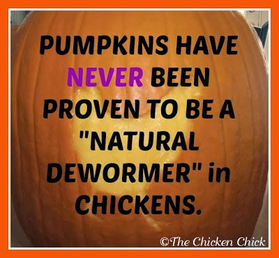 Pumpkins have NEVER been proven to be a'natural dewormer' in chickens.