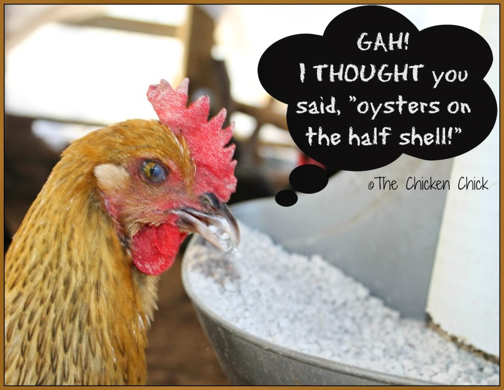 Hens deprived of adequate amounts of calcium will utilize the calcium stored within their own bones to produce eggshells, which is unhealthy for them.