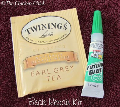 BEAK REPAIR SUPPLIES scissors superglue gel (gel is less apt to run, I wouldn't want to glue her tongue to her beak!) forceps or tweezers  One tea bag (cut in a patch slightly larger than the area of the break) 2 towels