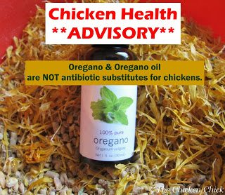 """Oregano oil is making it into a recipe on my blog for the first time since I read a New York Times article in December that featured a chicken farmer in neighboring New York who, in a laudatory attempt to reduce antibiotic use in his flock, has been adding a special type of oregano oil to his flock's feed. The scientific testing has just begun, but farmer Scott Sechler is encouraged by the results on his flock the past three years. """"You can't just replace antibiotics with oregano oil and expect it to work,"""" said Sechler. [He] maintain[s] strict sanitary practices, provide[s] good ventilation and light for [his] animals, and make[s] sure water lines are always clean."""""""