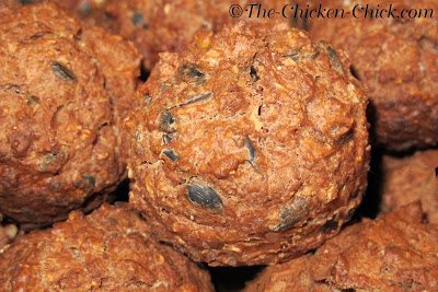 We can help them keep up with those demands by increasing their protein intake during the molt. I created a recipe for muffins that are high in protein, using primarily ingredients that they would naturally seek-out during a molt.
