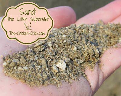 Sand: The Litter Superstar