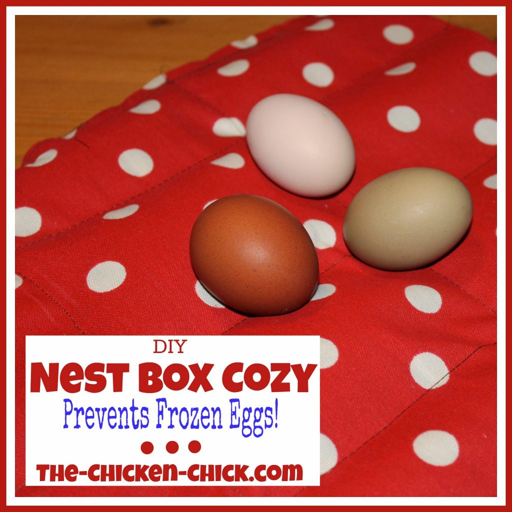 DIY Nest Box Cozy Prevents frozen eggs
