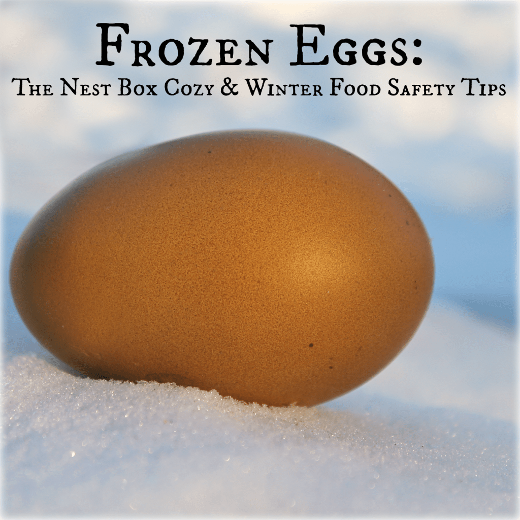 DIY Nest Box Cozy to Prevent Frozen Eggs in the chicken coop during frigid winter temperatures and additional tips on preventing frozen eggs and egg eating safety tips!