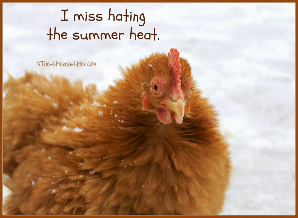 I miss hating the summer heat.