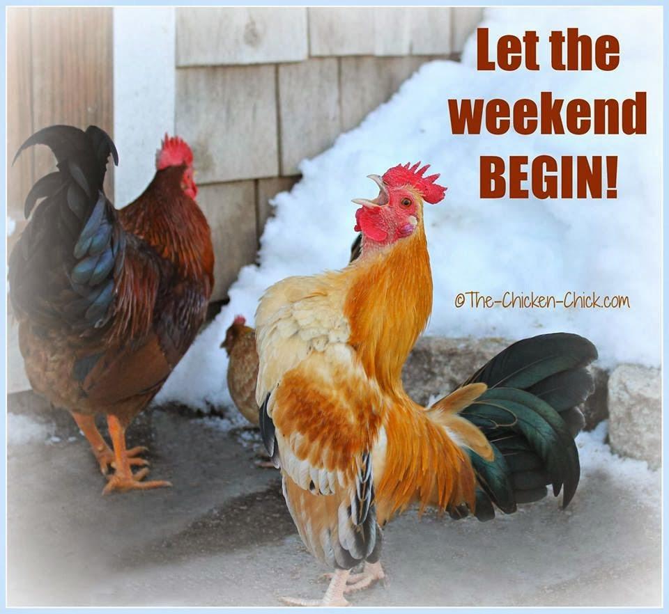Let the weekend begin!