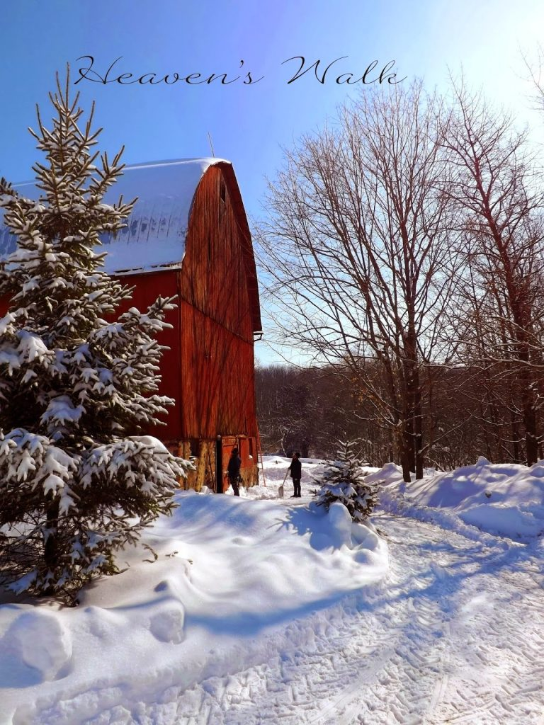 Red Barn Renovation, shared by Heaven's Walk