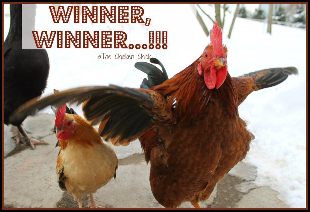 Winner, Winner...!!!