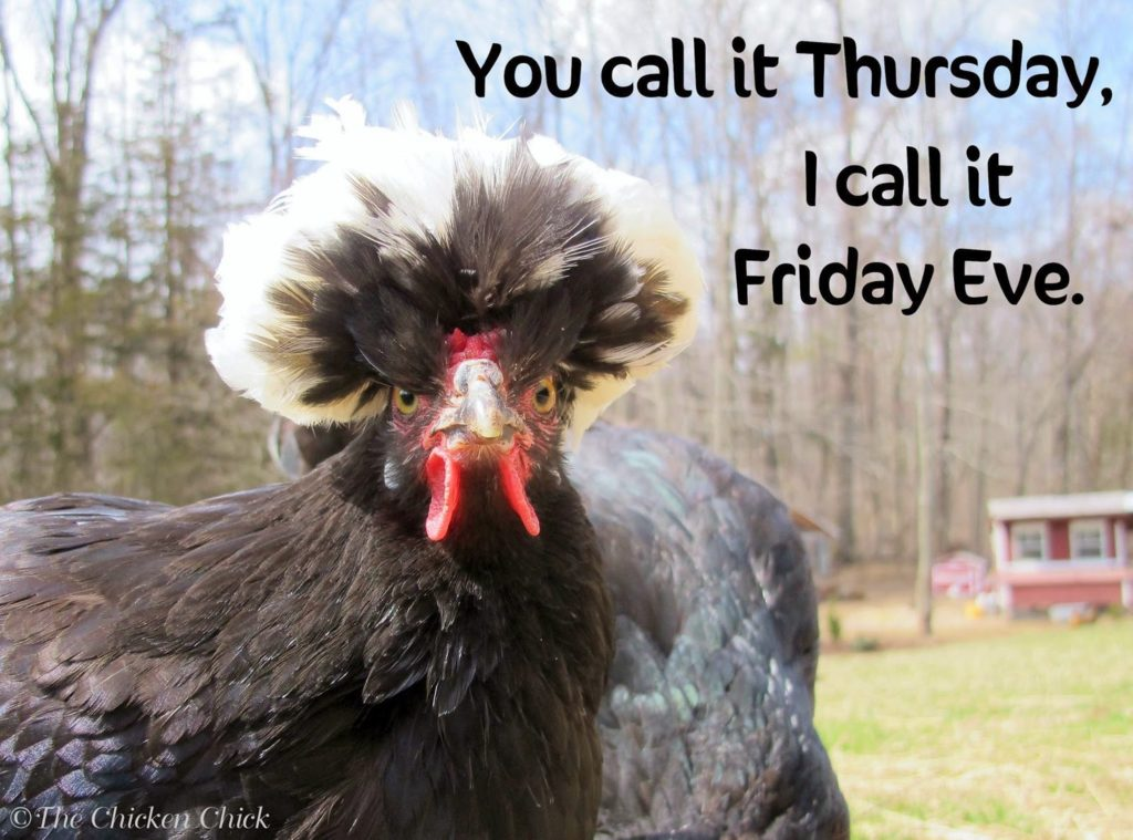 You call it Thursday, I call it Friday Eve.