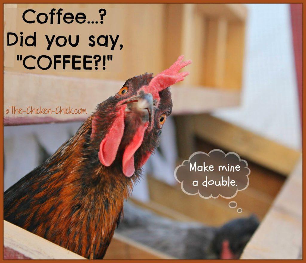 """Coffee...? Did you say """"COFFEE?!"""""""