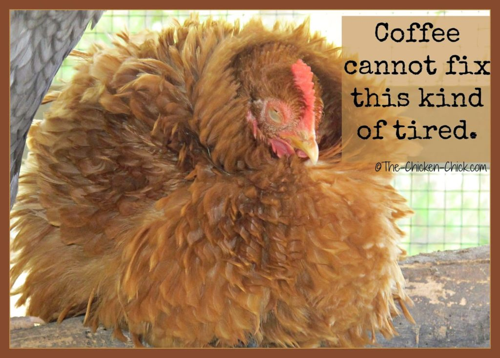 Coffee cannot fix this kind of tired.