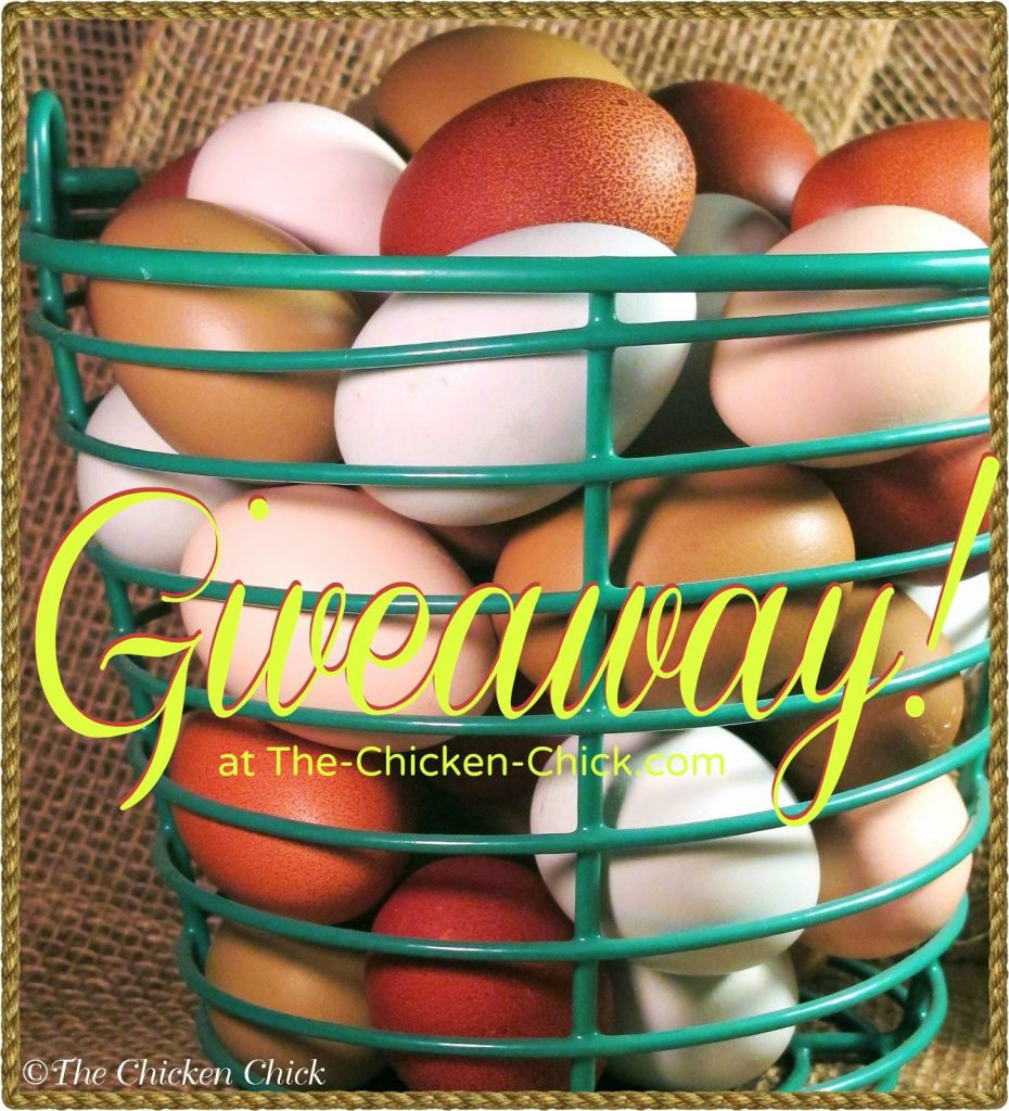 Wire egg basket giveaway, courtesy of EggCartons.com at The Chicken Chick