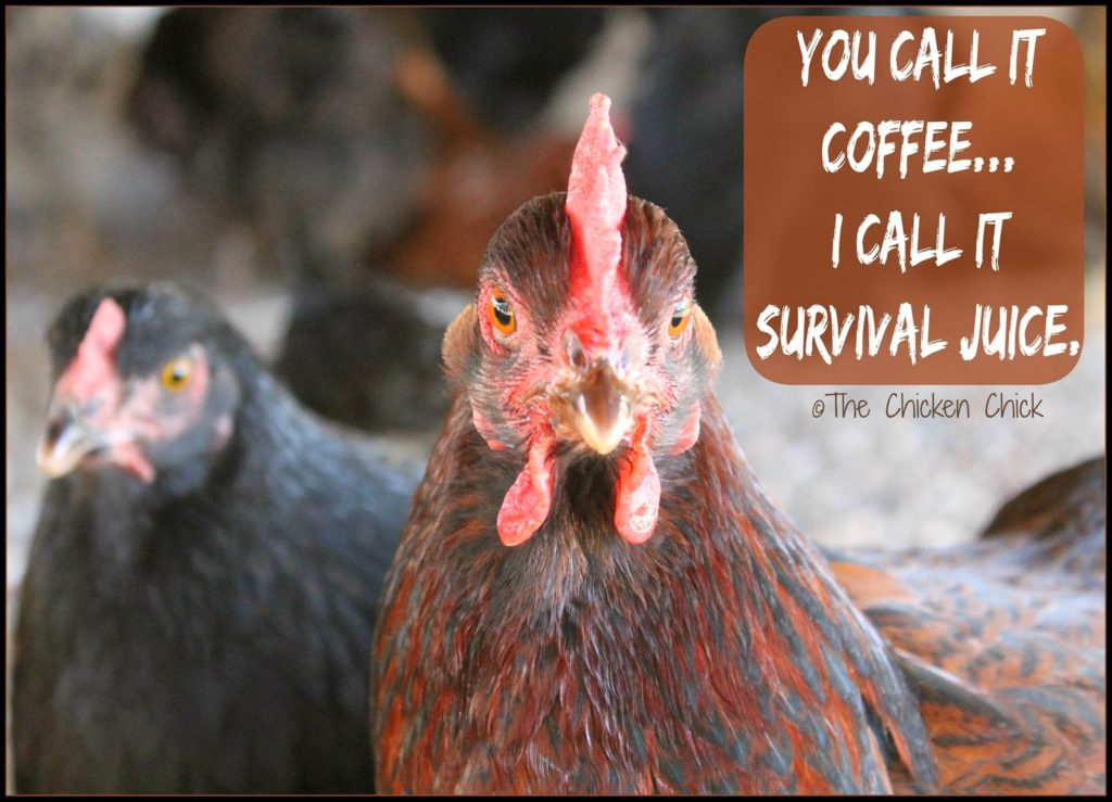 You call it coffee. I call it Survival Juice.