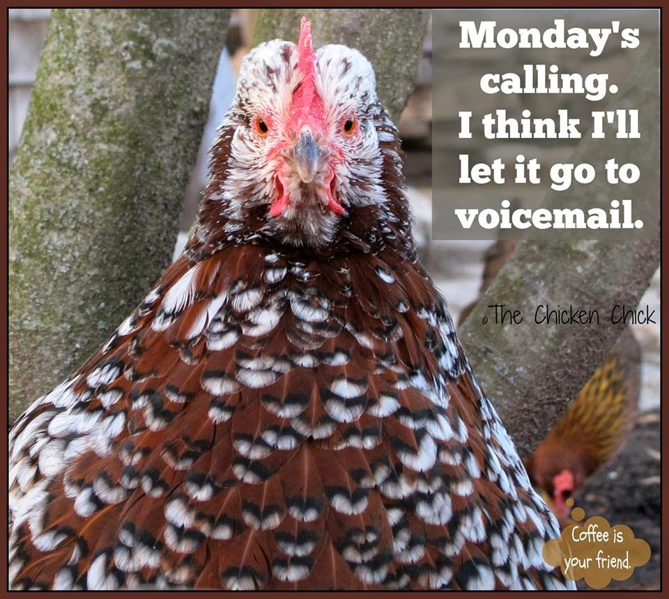 Monday's Calling. I think I'll let it go to voicemail.