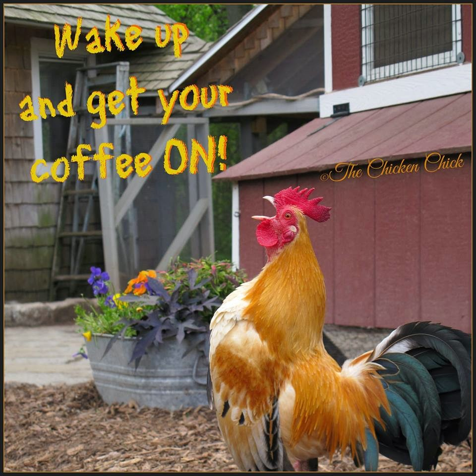 Wake up and get your coffee ON!
