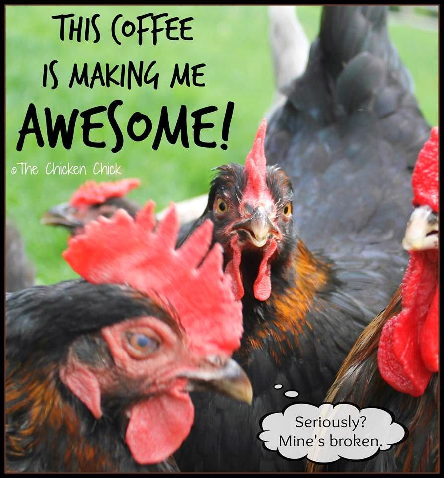 This coffee is making me AWESOME!