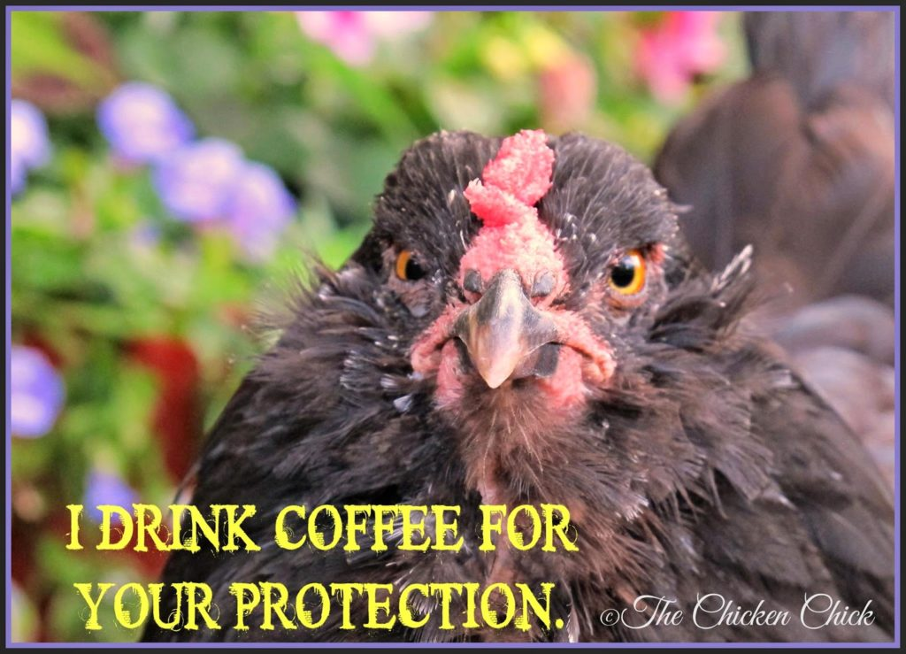 I drink coffee for your protection.