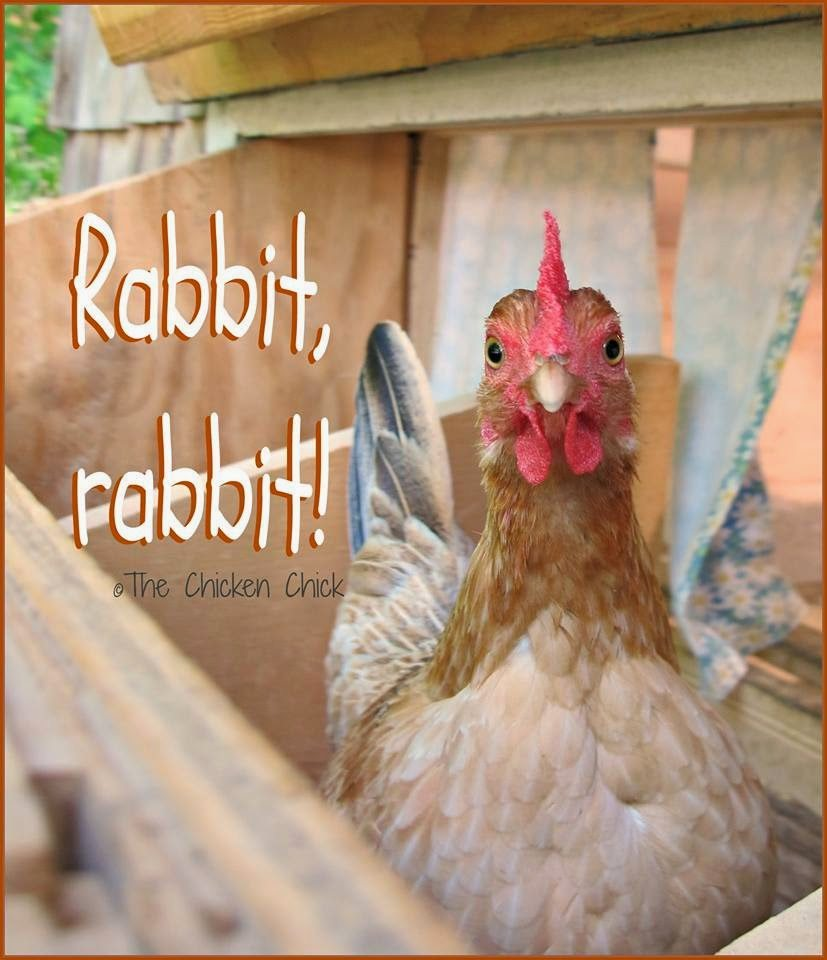 Rabbit, rabbit.