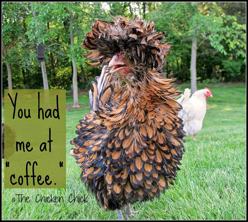 """You had me at """"coffee."""""""