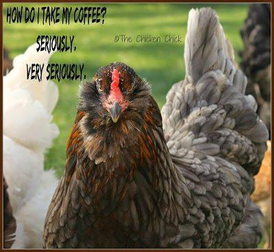 How do I take my coffee? Seriously? VERY SERIOUSLY.