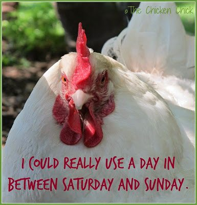 I could really use a day in between Saturday and Sunday.