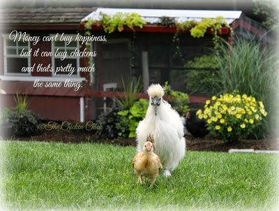 Money can't buy happiness, but it can buy chickens and that's pretty much the same thing.