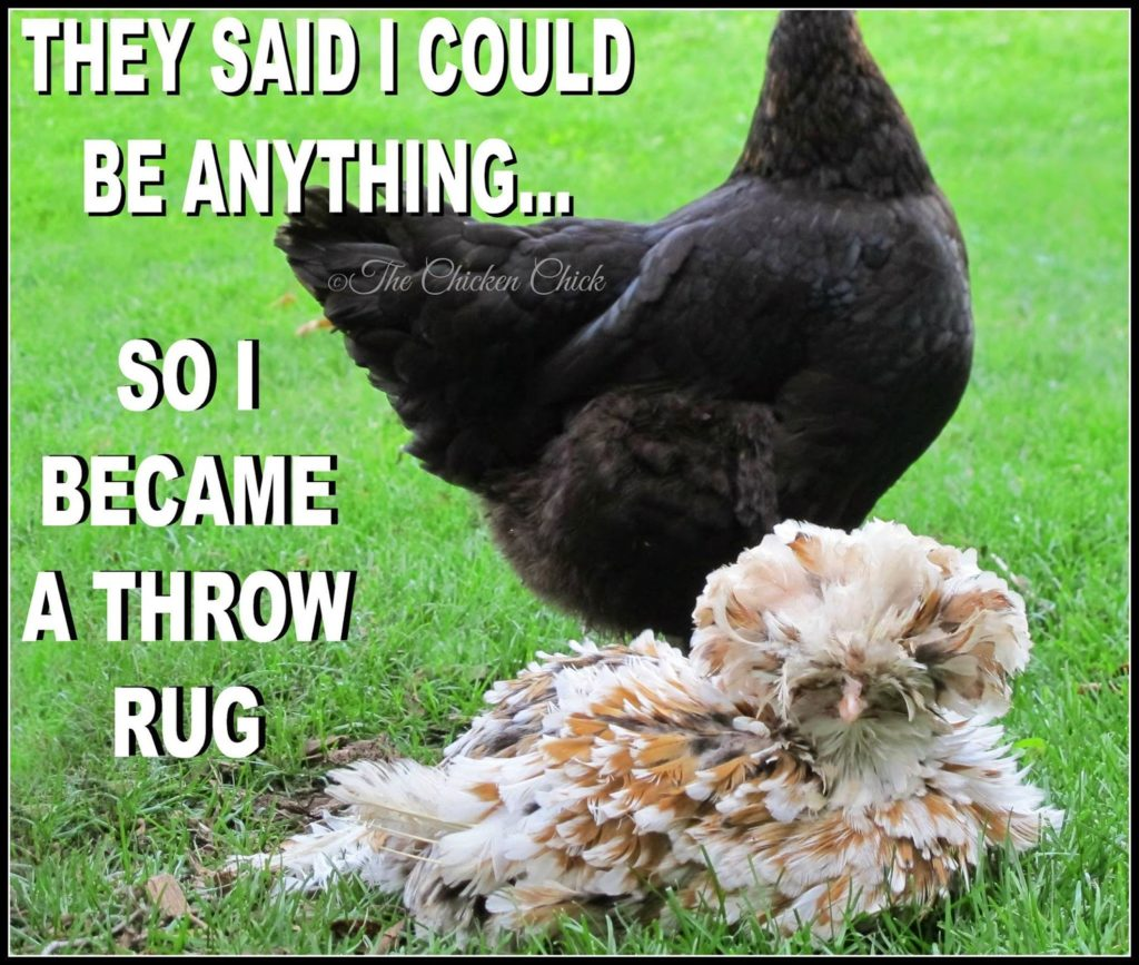 They said I could be anything, so I became a throw rug.