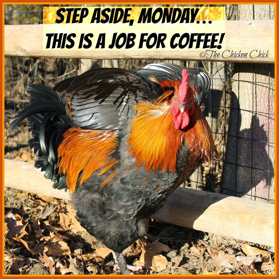 Step aside, Monday...this is a job for coffee!