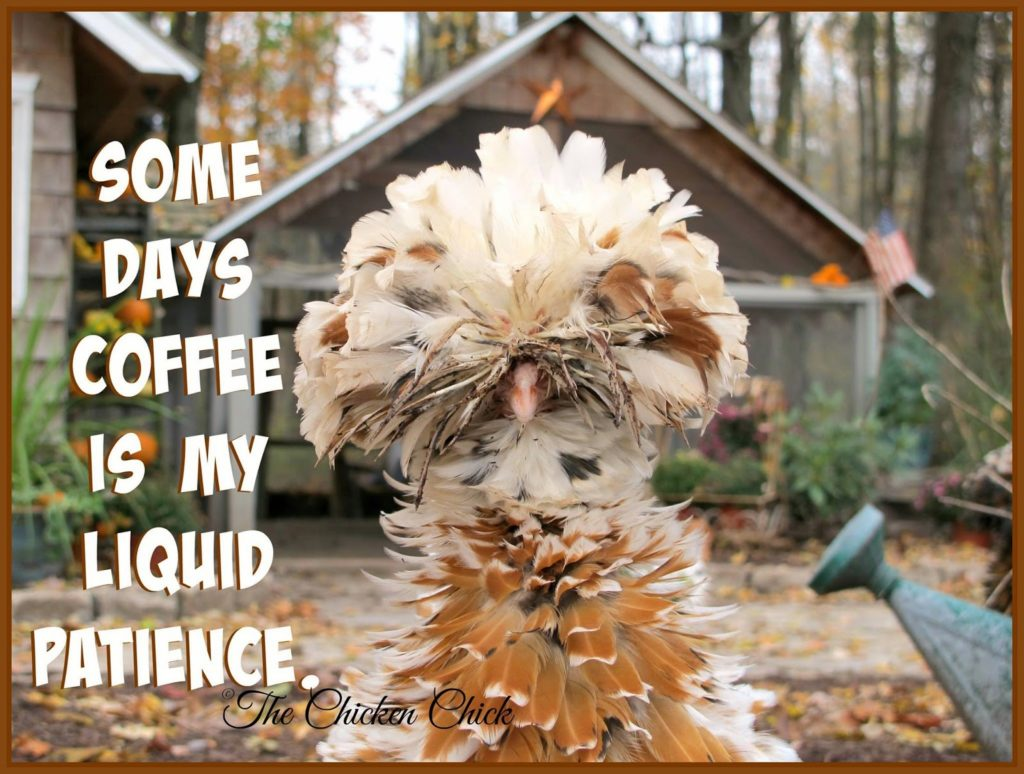 Some days coffee is my liquid patience.