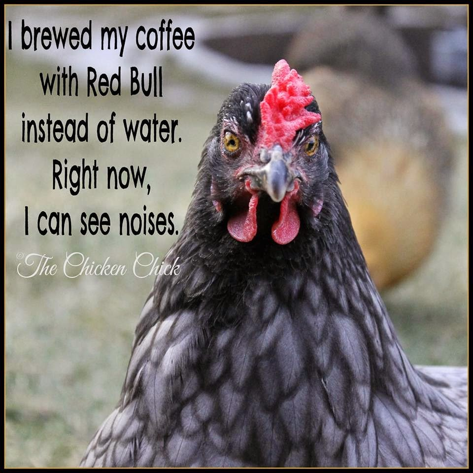 I brewed my coffee with Red Bull instead of water. Right now, I can see noises.