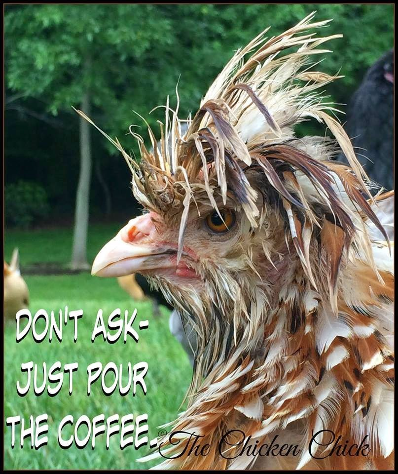 Don't ask- just pour the coffee.