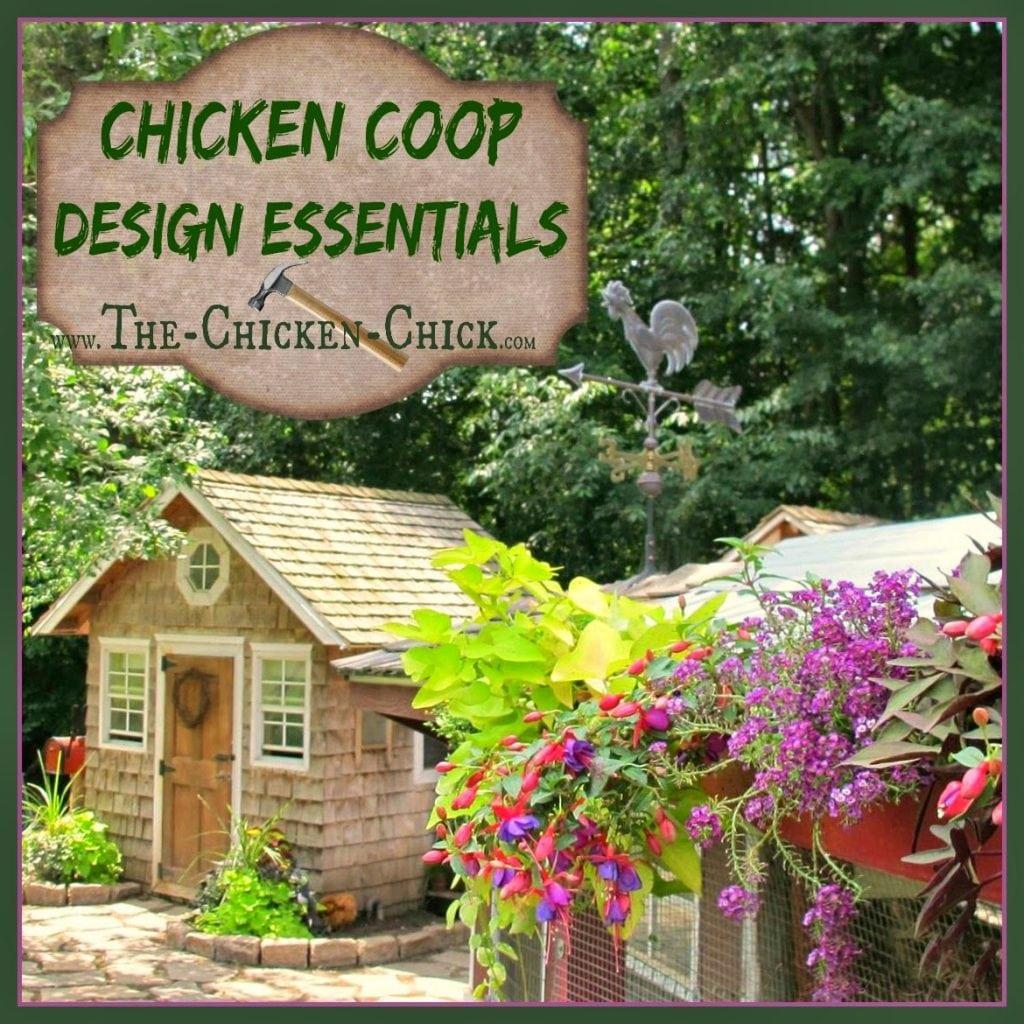 Chicken Coop Design Essentials, Details And Luxuries Guide