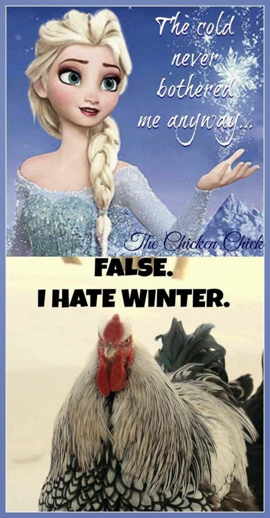 The cold never bothered me anyway. FALSE. I hate winter.