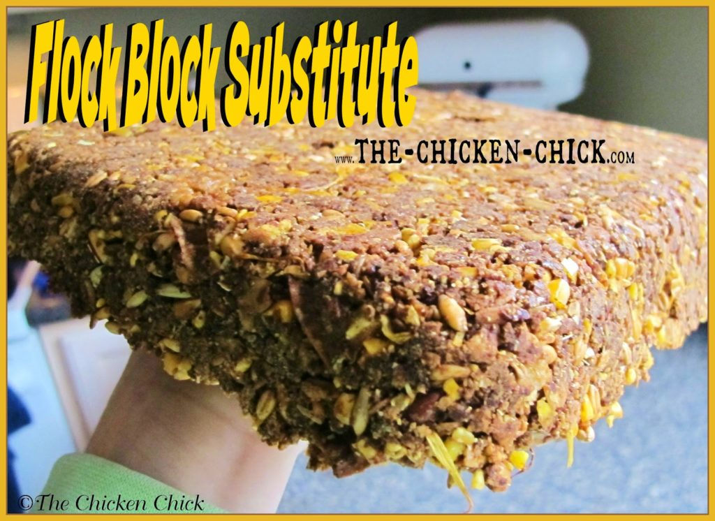 Get the recipe for my nutritious, Homemade Flock Block Substitute here!