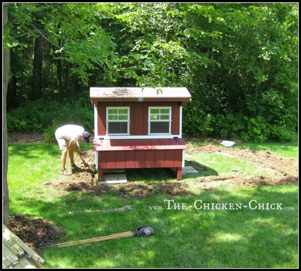 """Deter digging predators by creating a 12"""" trench around the coop perimeter and burying the hardware cloth. Alternatively, extend a hardware cloth apron 12"""" out from the perimeter of the run. An apron isn't as effective as a trench, but will provide a degree of security from less ambitious digging critters. Much more about predator-proofing a chicken coop HERE."""