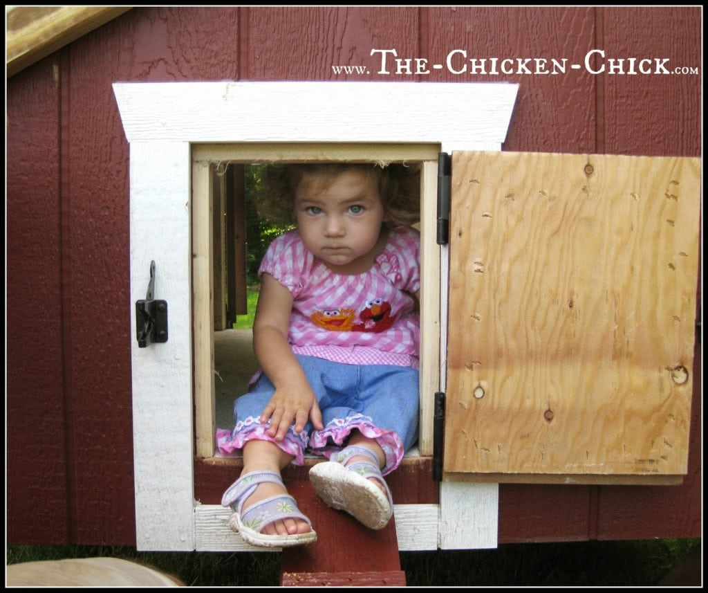 Chickens use a u201cpop dooru201d to enter and exit the coop. 12u201d  sc 1 st  The Chicken Chick & Chicken Coop Design Essentials Details and Luxuries Guide