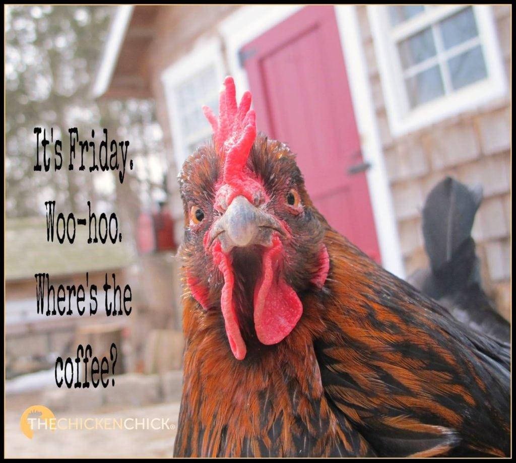 It's Friday. Woo-hoo. Where's the coffee?