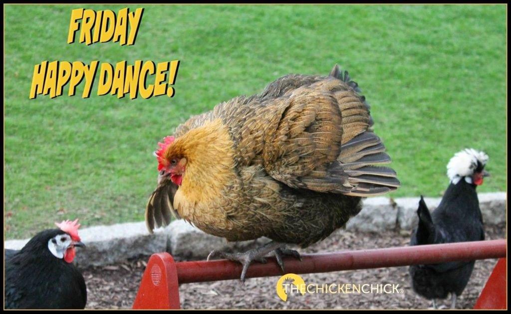 Frinday Happy Dance!
