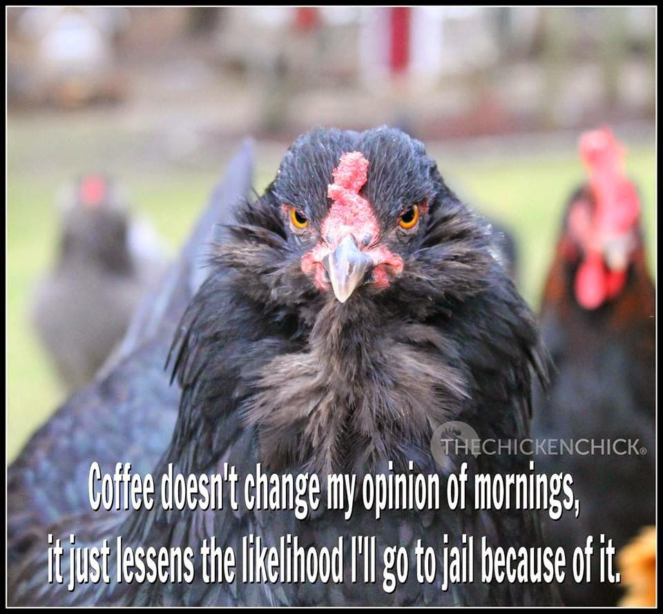 Coffee doesn't change my opinion of mornings, it just lessens the likelihood I'll go to jail because of it.