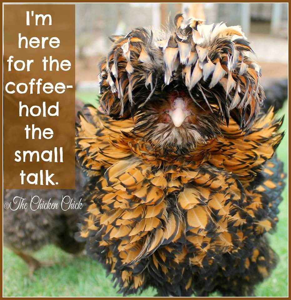 I'm here for the coffee, hold the small talk.